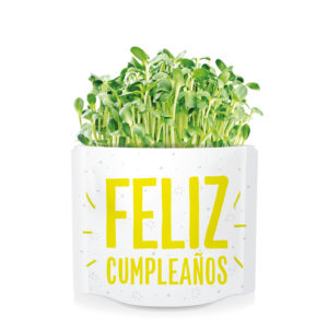 Postal verde Feliz cumpleaños