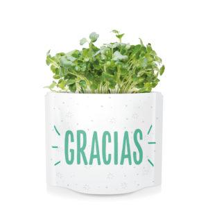 Postal verde Gracias
