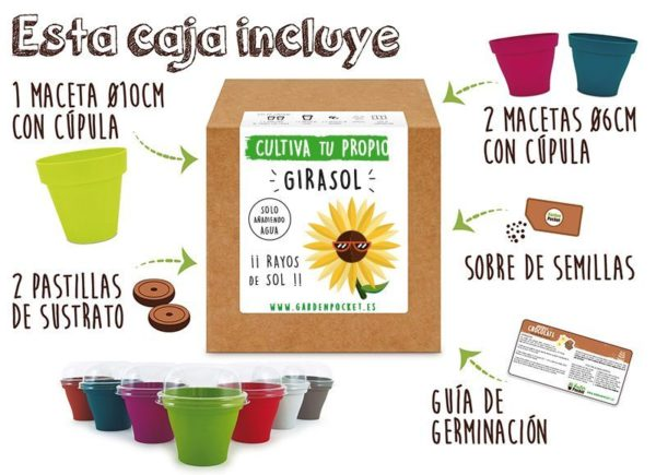 Kit cultivo girasol Pocket Garden instrucciones