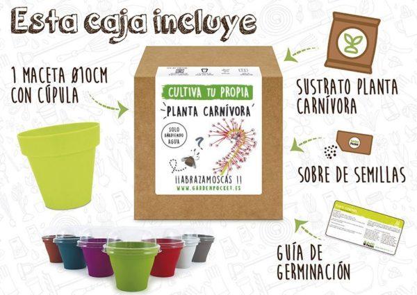 Kit cultivo planta carnívora drosera Pocket Garden instrucciones