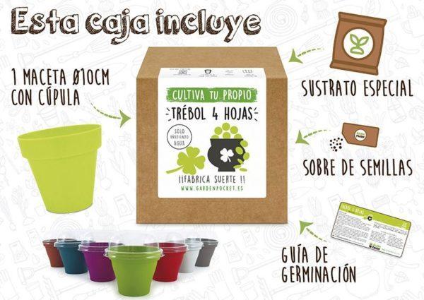 Kit cultivo trébol de 4 hojas Pocket Garden instrucciones